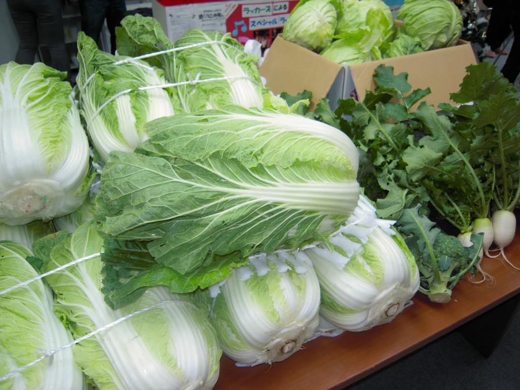 とれたてのお野菜