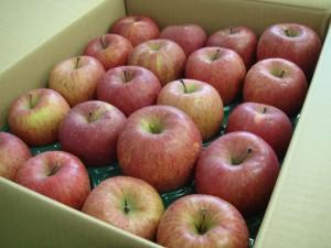 坂本様より りんご