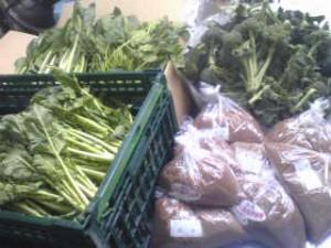 山本様 野菜1